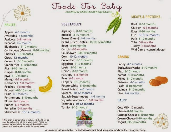 1st year baby food chart
