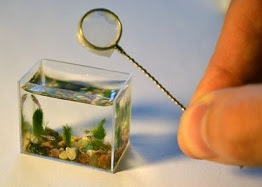smallest fish tank