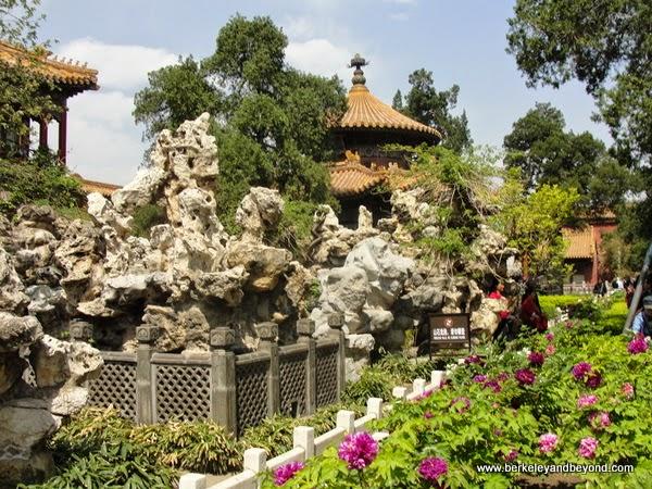 garden at Forbidden City in Beijing, China