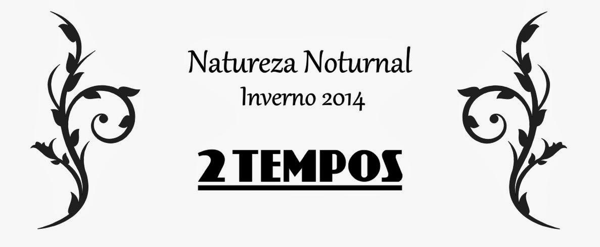 2 Tempos