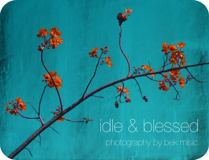 idle & blessed