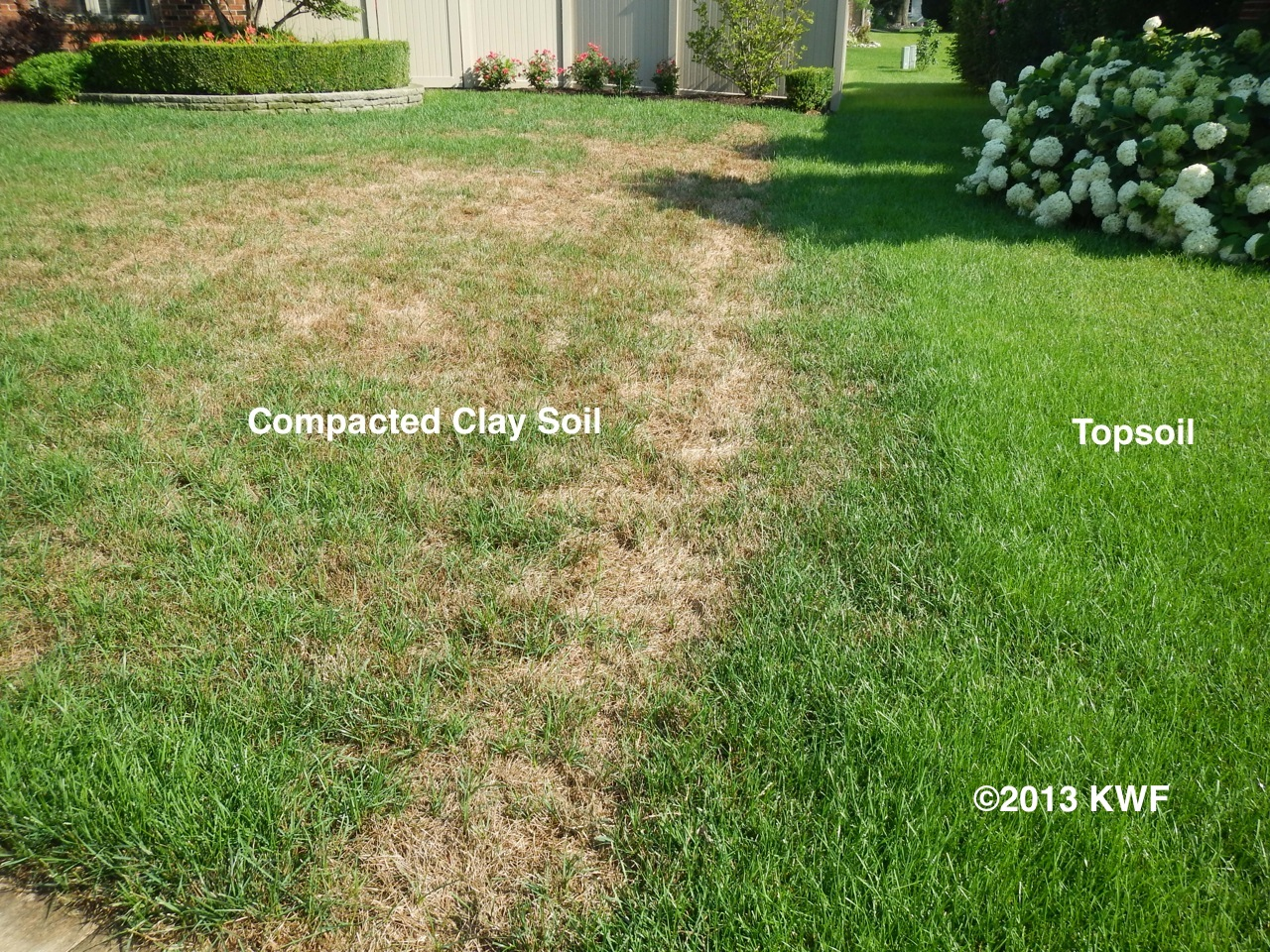 Michigan state university the secret to good lawns good soil for Lawn topsoil