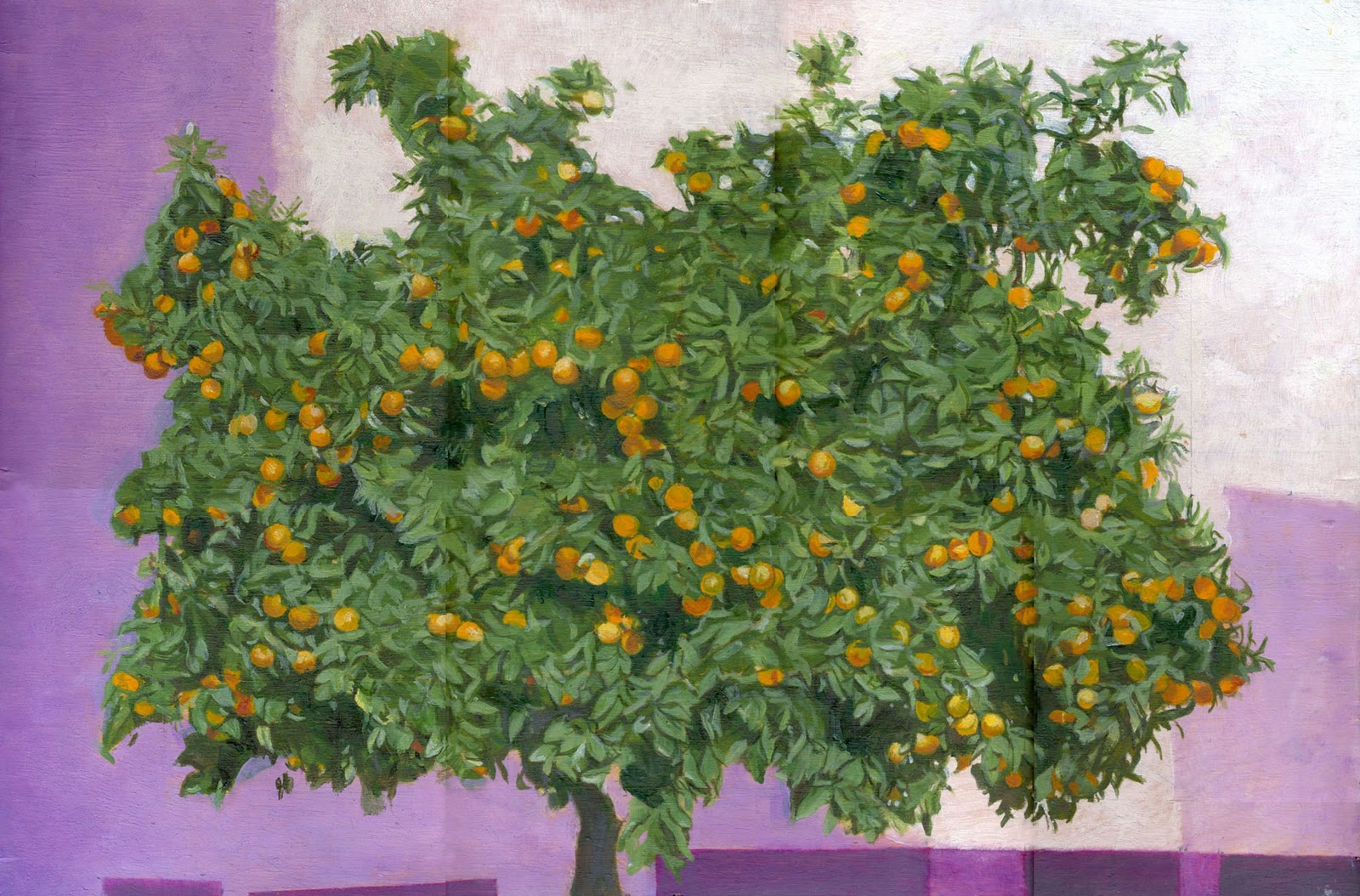 Quinta de Santiago: El bonsai del invierno