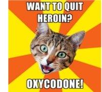 Oxycodone buy online