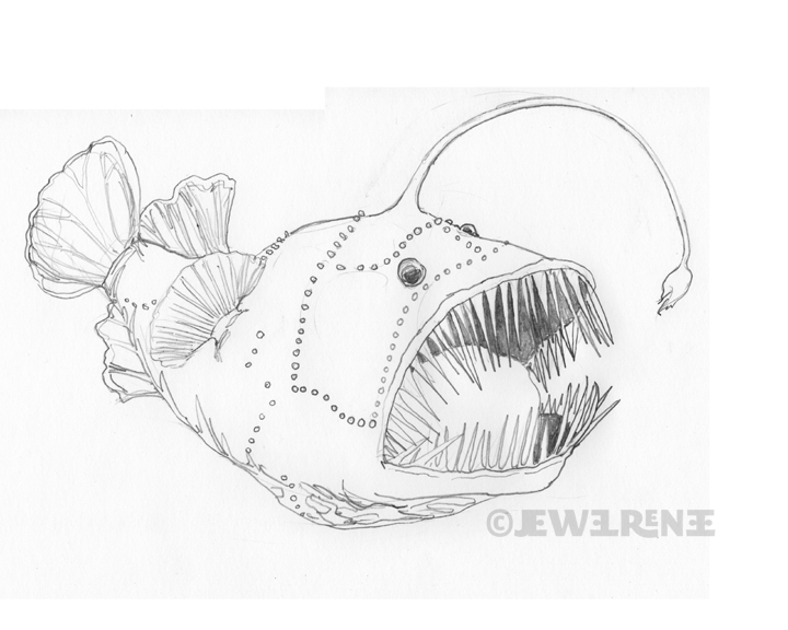 how to draw a angler fish