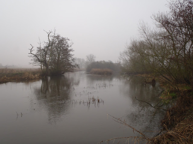 The Warwickshire Avon on a misty March day
