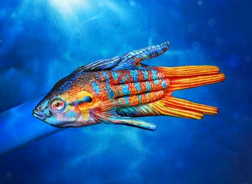15-Paradise-Fish-Guido-Daniele-Painting-Animals-on-Hands-www-designstack-co