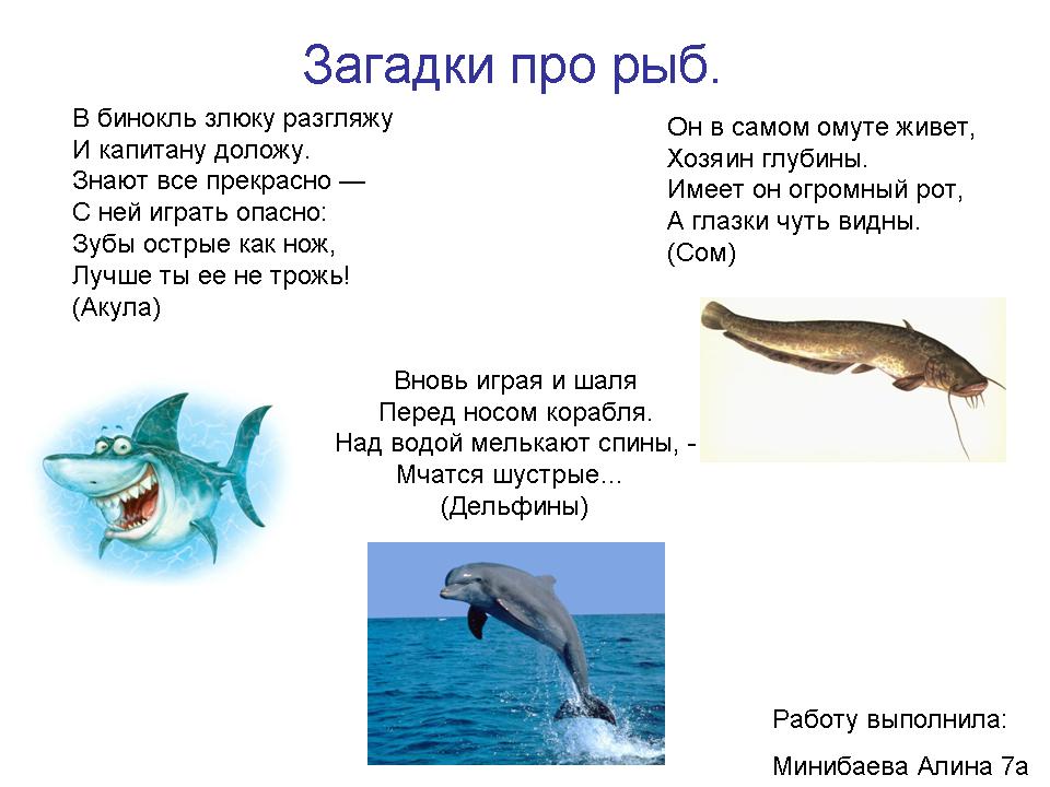 Стихи про подарок рыбу 67