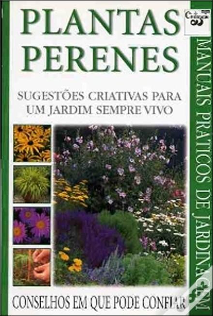 flores jardim perenes : flores jardim perenes:Vida Suculenta: Plantas Perenes: sugestões criativas para um jardim