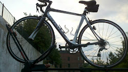 My Other Bike, SynSi