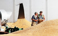 Grain Company fined by OSHA after Worker's Death