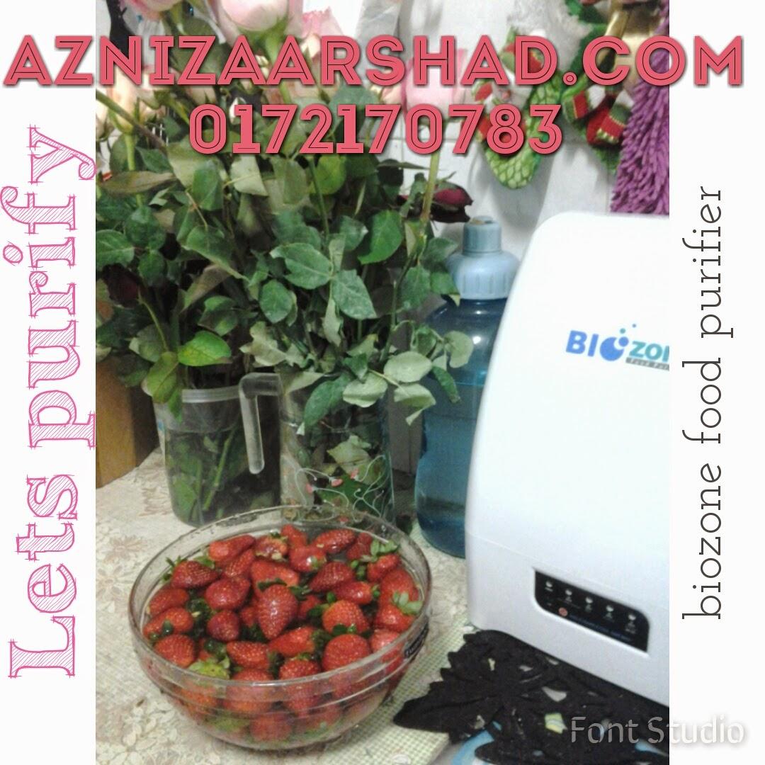 biozone food purifier, biozone promotion, aznizaarshad, agen biozone