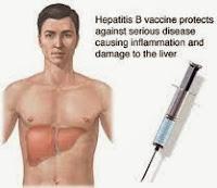 Pengobatan Penyakit Hepatitis B Secara Alami