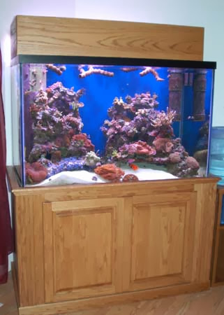 How to build your own aquarium stand ayanahouse for Make your own fish tank