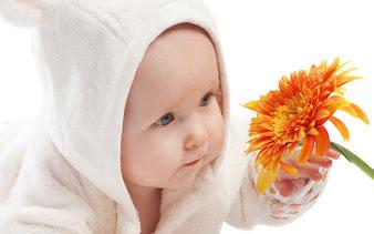 #4 Babies Wallpaper