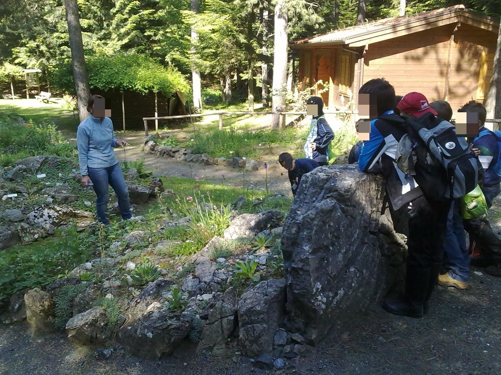 Giardino Pietra Corva : Scuola in valle visita al giardino botanico di pietra corva