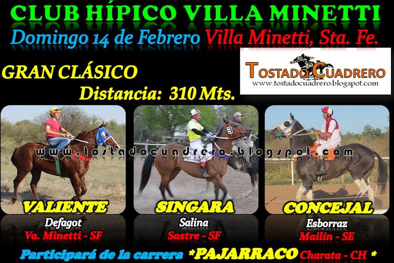 CLASICO VILLA 310