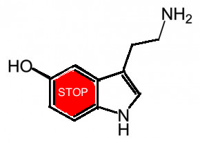 höja serotonin i hjärnan