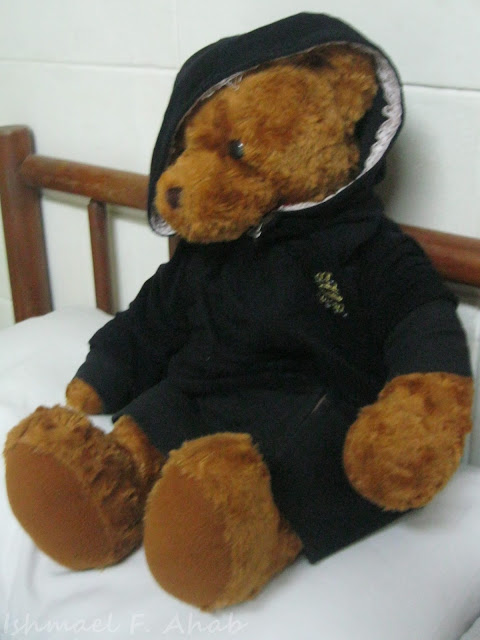 My companion in Thailand: Teddy Bear