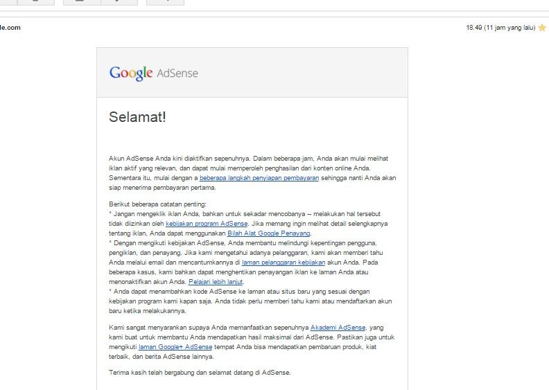 bisnisonline,cara diterima adsense dalam waktu satu hari,adsense,google