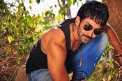 Malupu movie latest photos-thumbnail-5