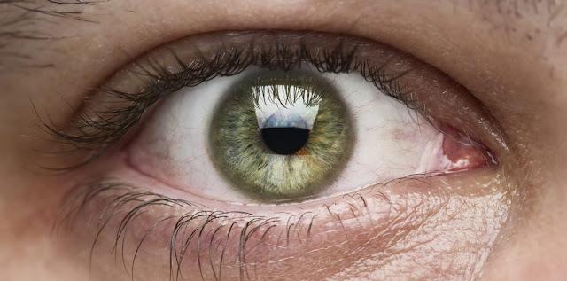 Ojos y fisiologia