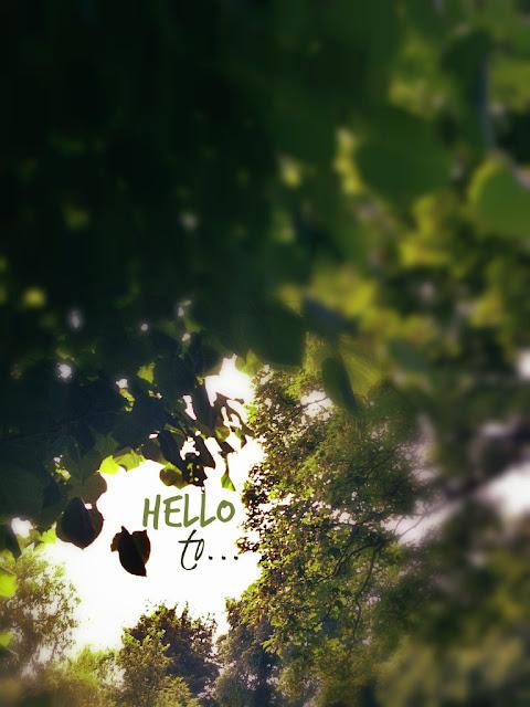 Hello to...