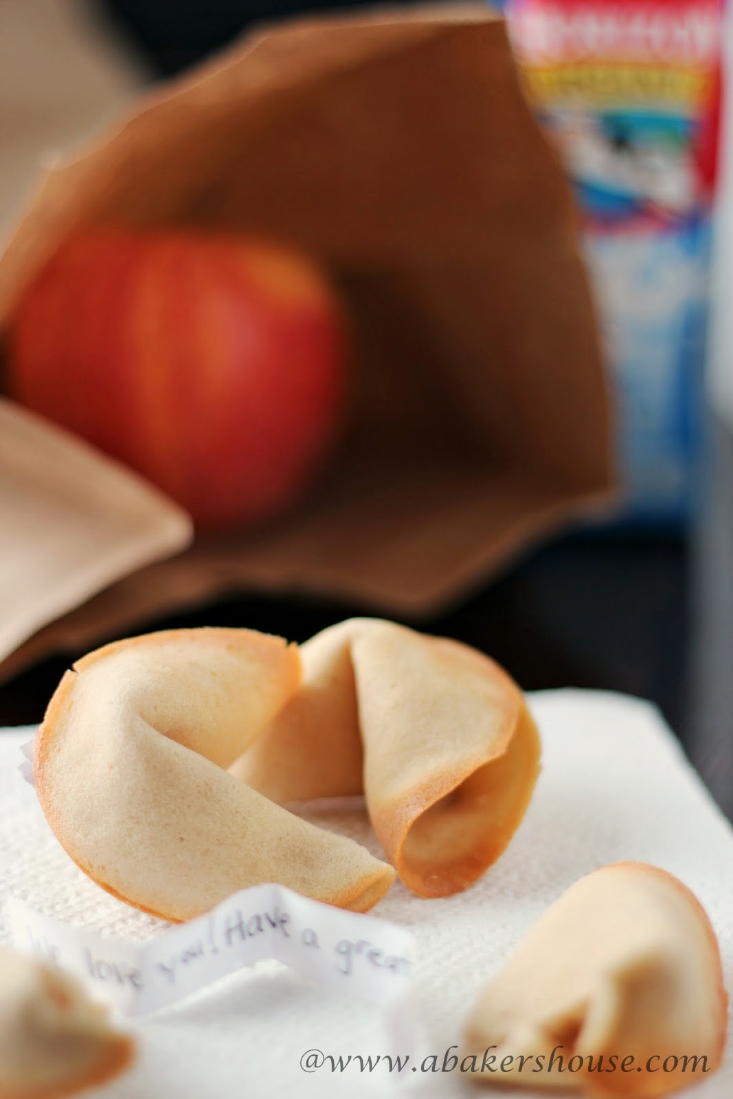 Fortune Cookies- Idea for Kids' Lunches