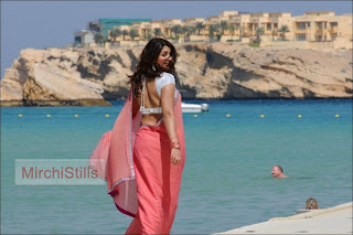 Richa Gangopadhyah in lovely Peach Colored Transparent Saree Beautiful Pics009