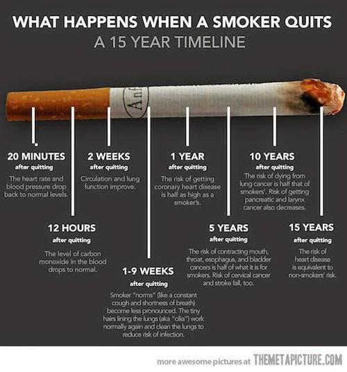 Don't believe the Science lies: Shisha isn't as harmful as smoking #NoToSmoking #YesToBetterHealth
