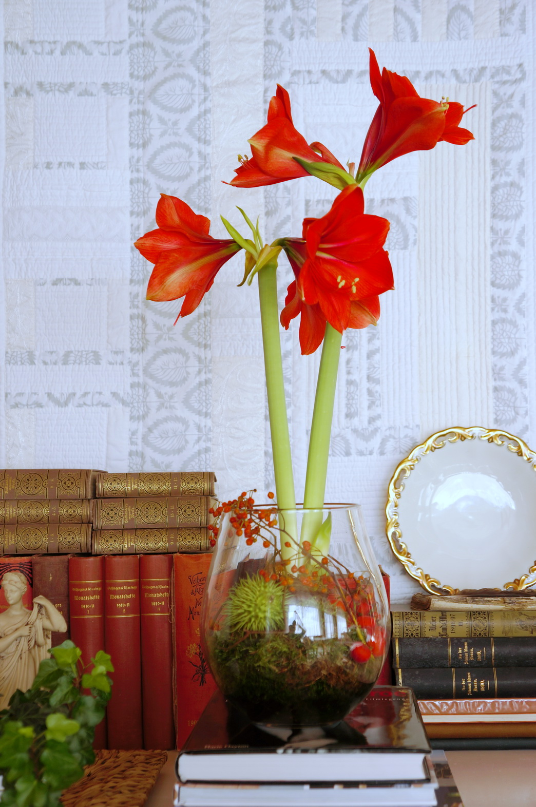 meine quilts und ich eine rote amaryllis. Black Bedroom Furniture Sets. Home Design Ideas