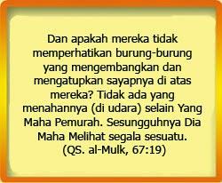 Takat Tausiah Singkat Allah Swt Maha Melihat