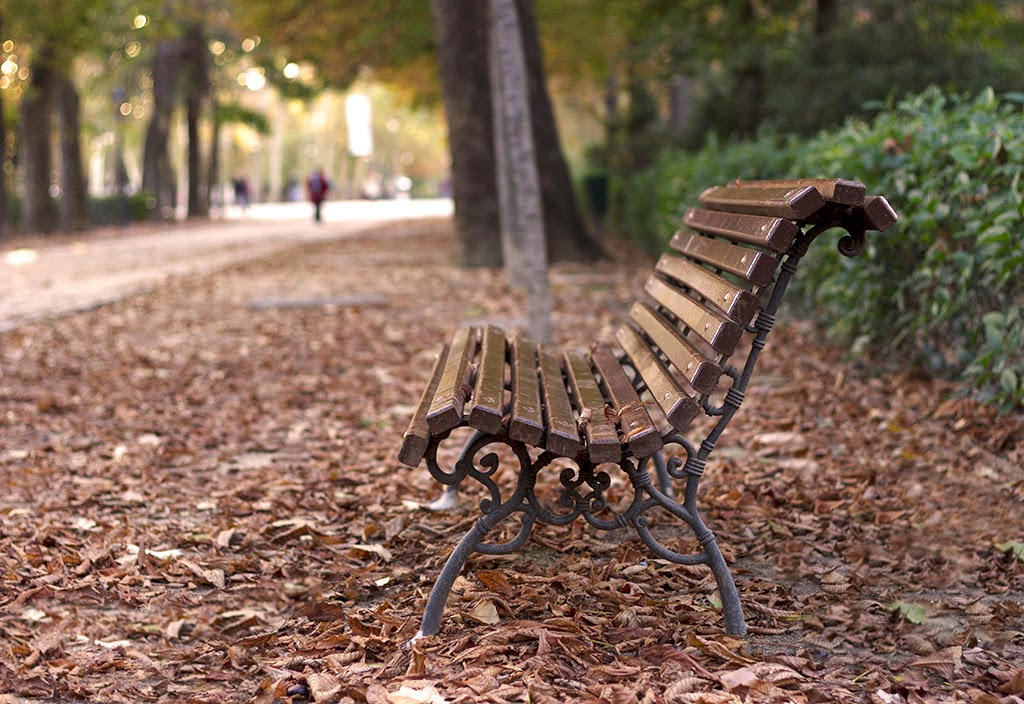 fotografía otoño soledad El Retiro Madrid
