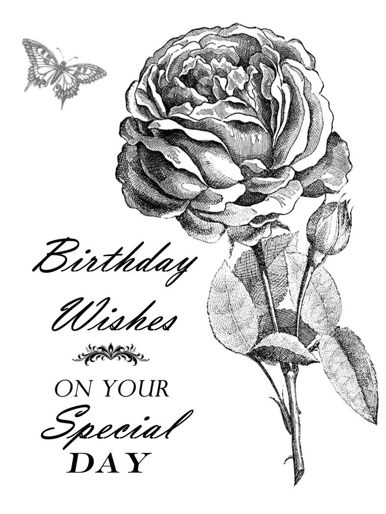 http://2.bp.blogspot.com/-z6gBm3385mQ/Uxf7kOrNnmI/AAAAAAAANuo/UTsi2vCy-Ig/s1600/01+rose+card.jpg