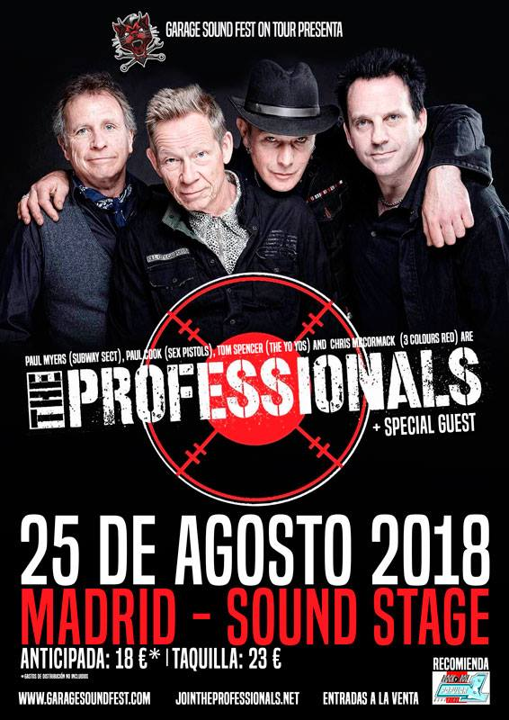 THE PROFESSIONALS