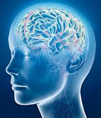 Gambar rumah pikiran dari otak