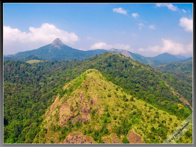 Silent Valley, Palakkad, Kerala