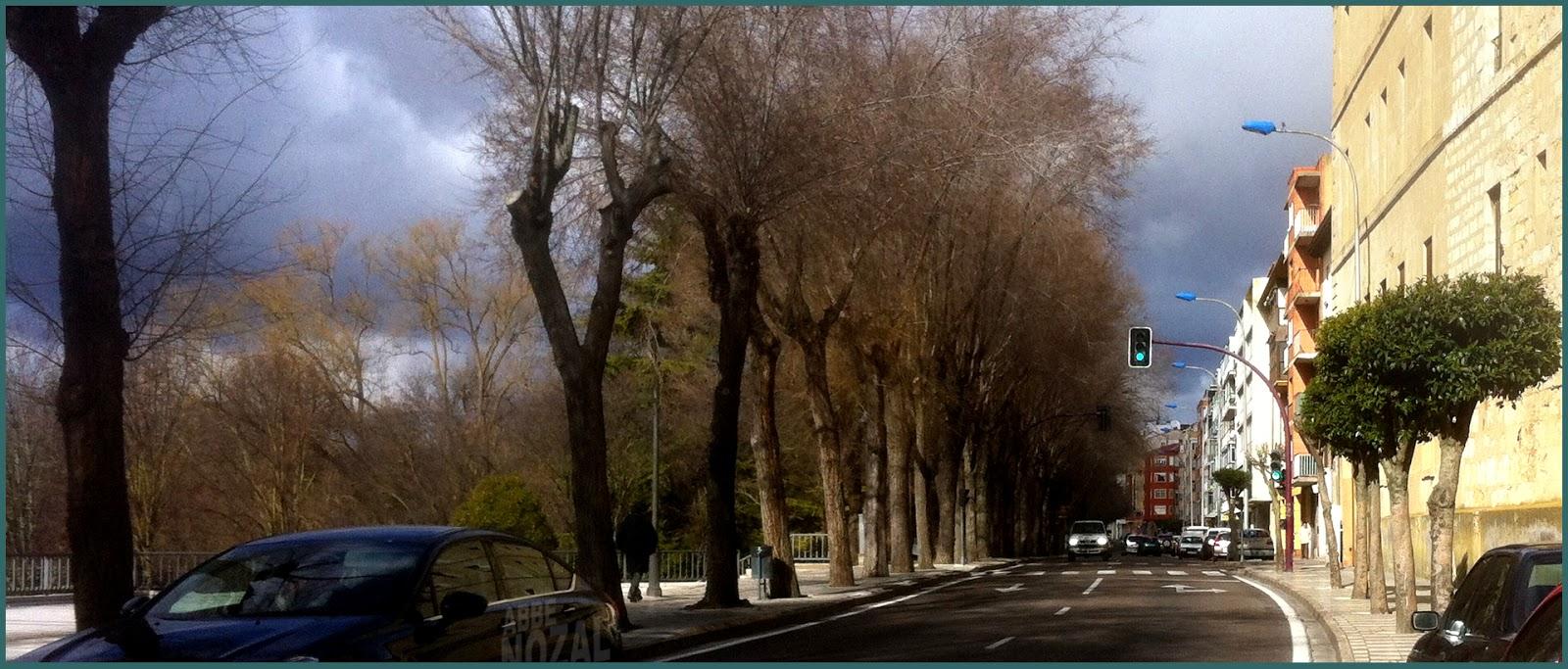 Avenida Castilla, 2014 Abbé Nozal