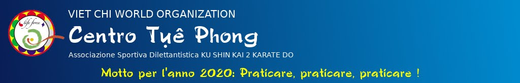 Viet-Chi Institute - Centro Tụê Phong