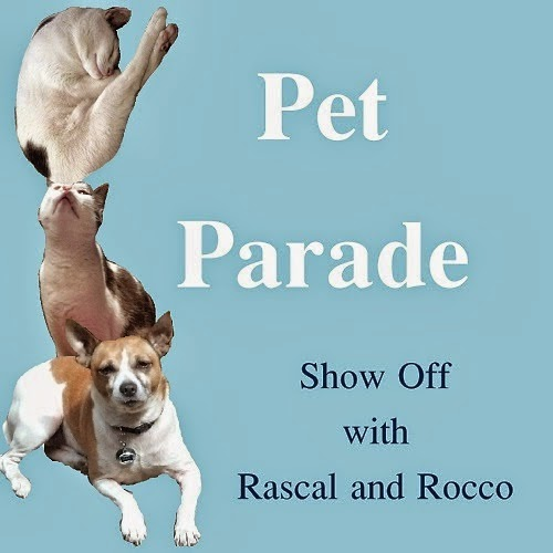 http://www.rascalandrocco.com/p/pet-parade.html