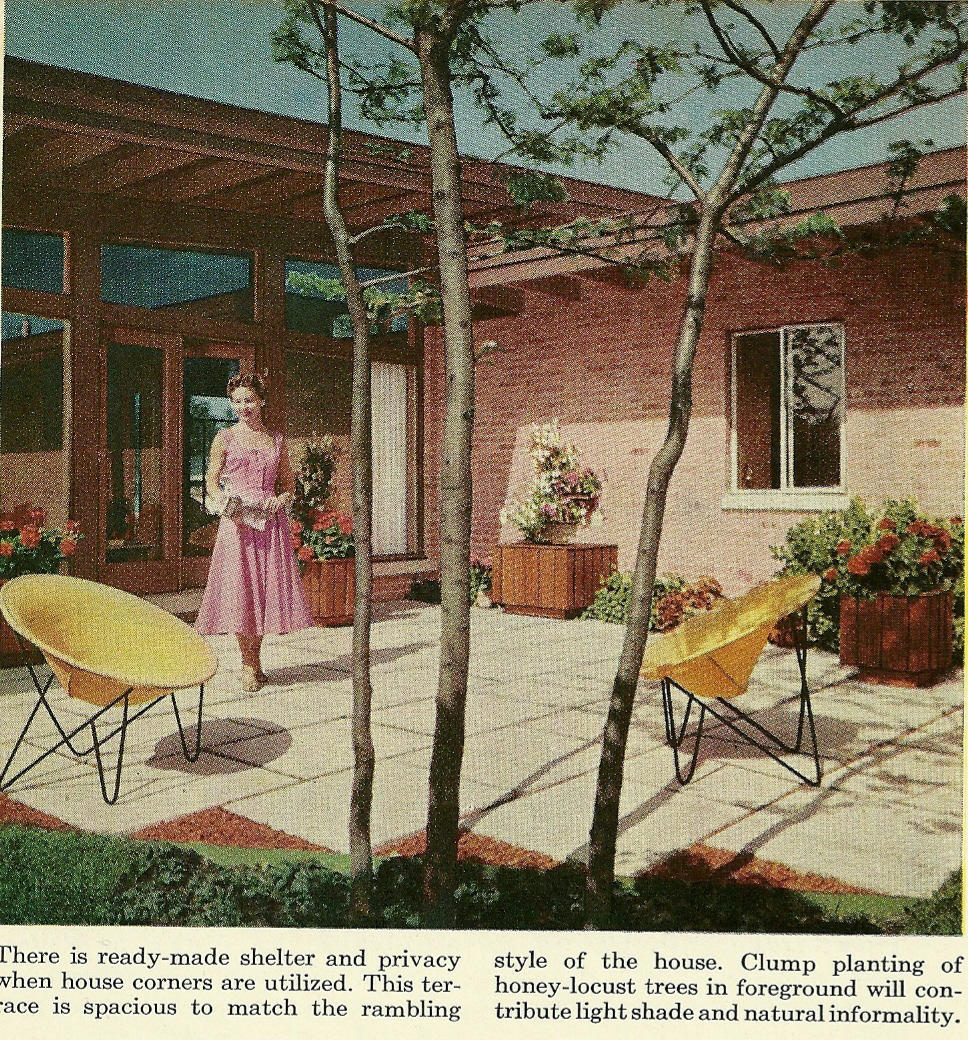 Lessons from the Garden: Gardening Flashback: 1960s