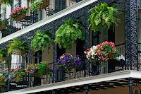 un jardín en el balcón