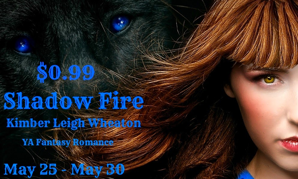Sale Blast: Shadow Fire by Kimber Leigh Wheaton + Giveaway! (INT)