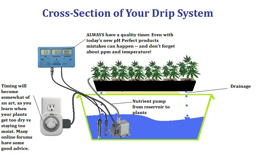 Drip System Grow Room Design