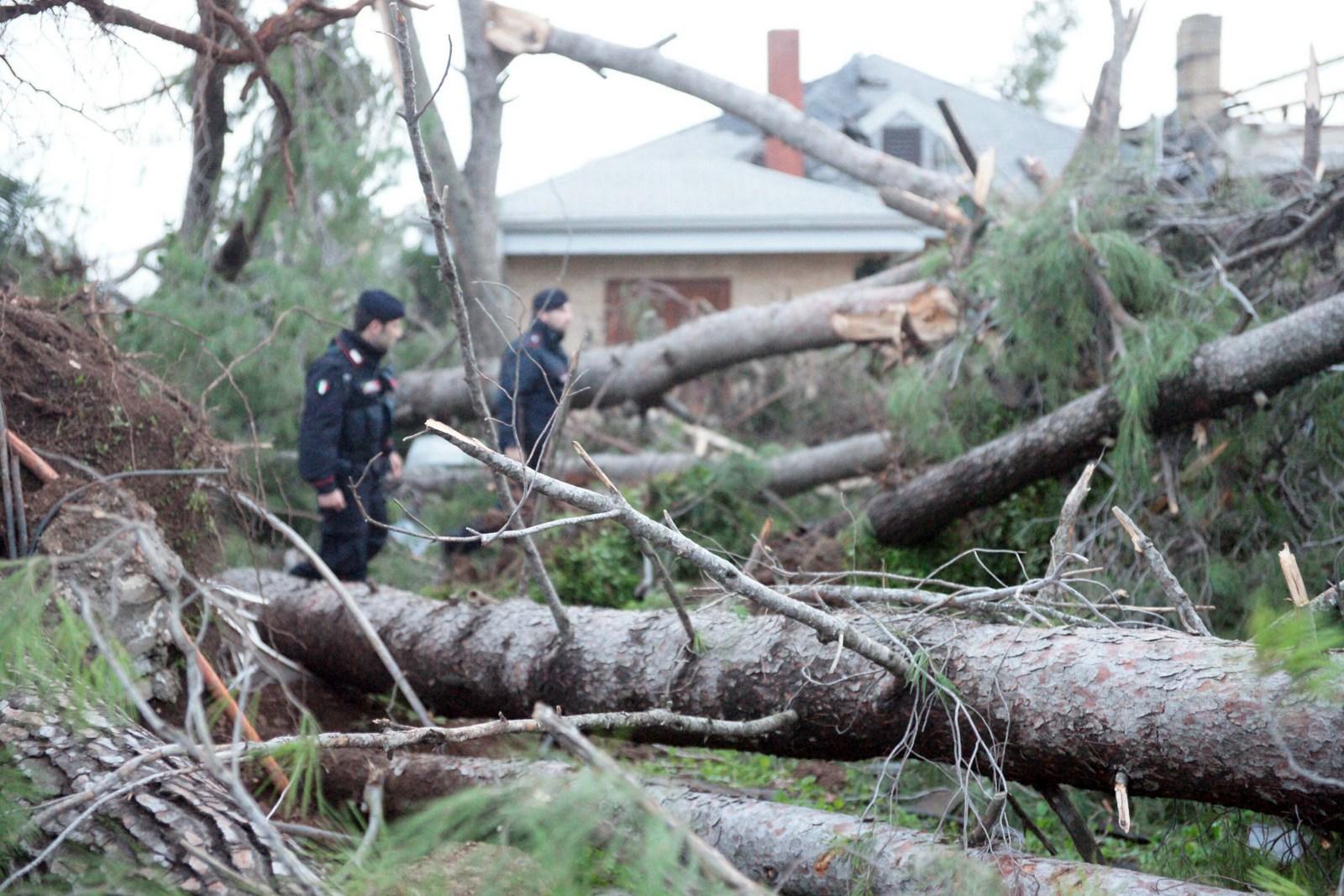 """Statte ambiente e territorio.: ad1anno dal tornado: """"salvataggi ..."""