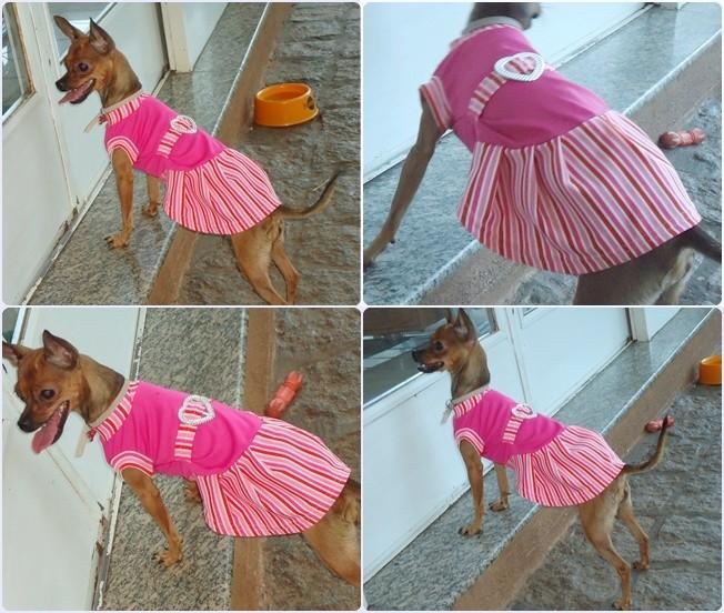 http://2.bp.blogspot.com/-z8WjyU9loEI/T1UONkVgsmI/AAAAAAAAGlg/boTDhr7E3RU/s1600/vestido%2Brosa%2Btogdog.jpg