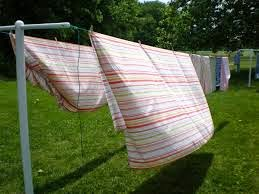 Sheets Drying on the Clothesline