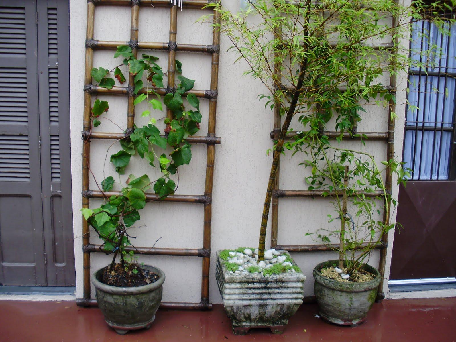 artesanato no jardim : artesanato no jardim: tudo por ali quando está florido) e no meio, um bambú mossó