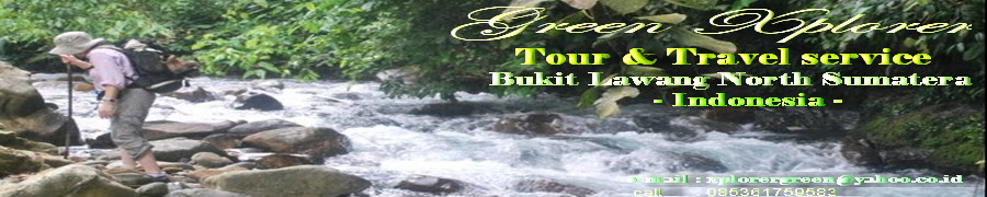 Green Xplorer( Bukit Lawang Tour & Trekking Best Seller)