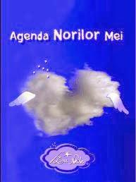 Agenda Norilor Mei